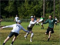 Men's Ultimate Frisbee